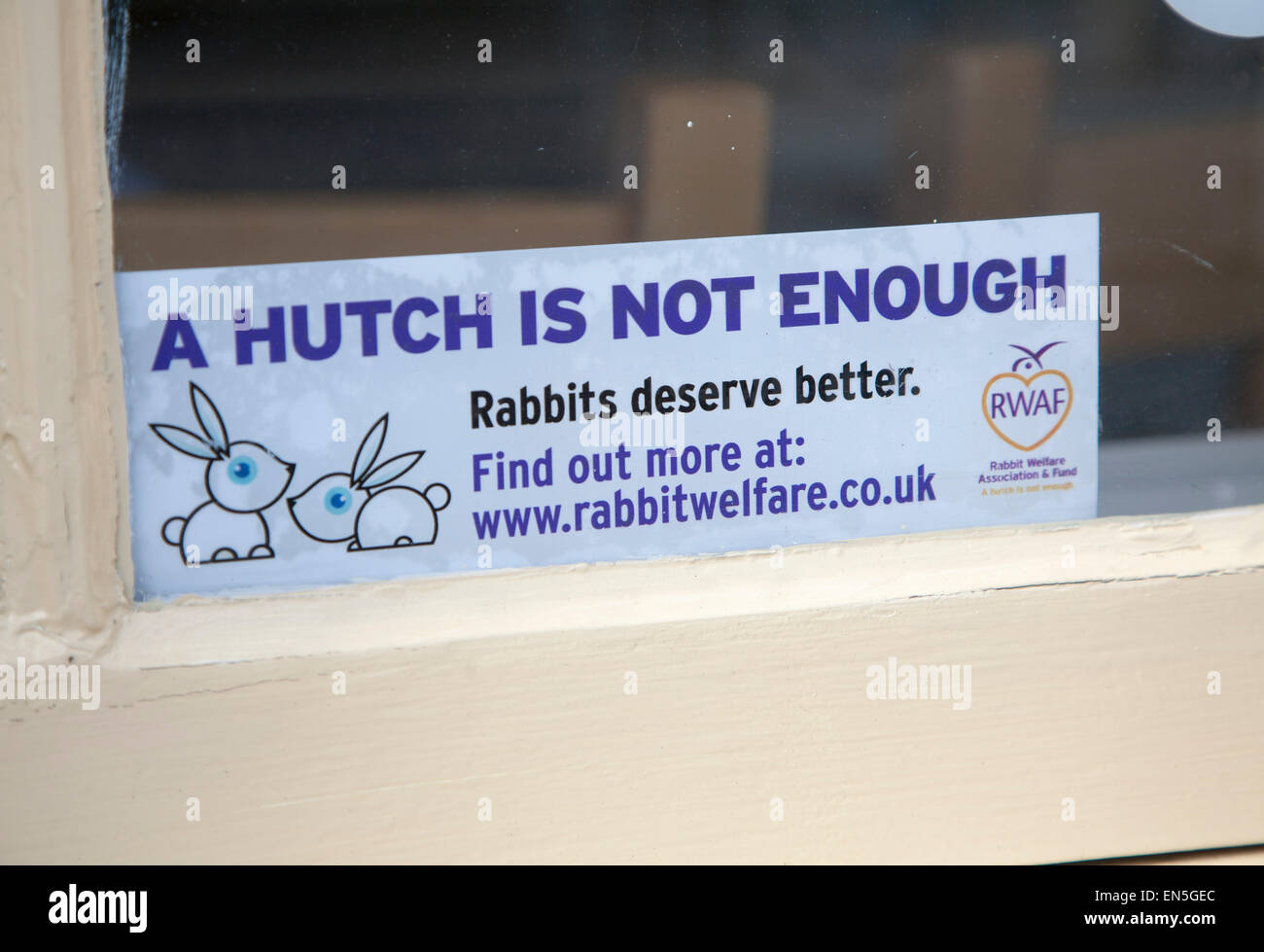 Sign in window saying 'A Hutch is not Enough - rabbits deserve better', Rabbit Welfare, UK - Stock Image