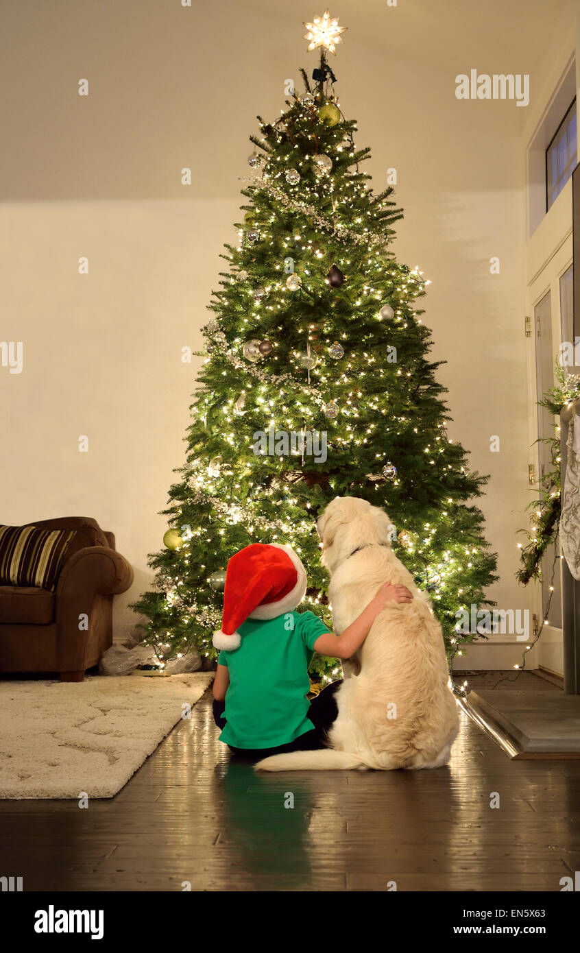 Young Boy And His Pet Dog Sitting Looking At Their Christmas Tree