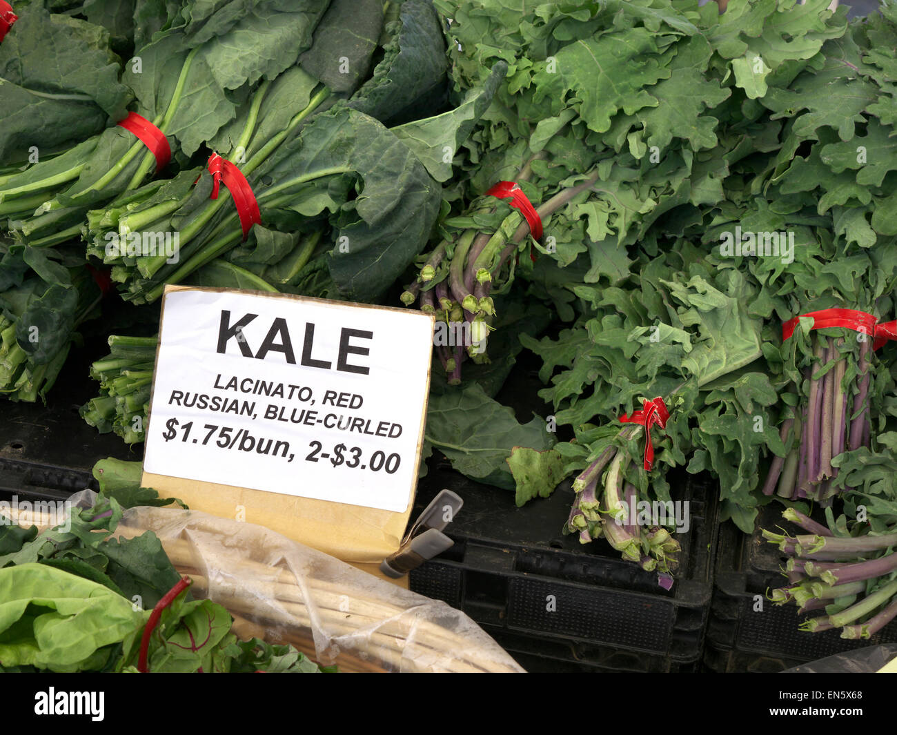 Loose bundles of Kale 'lacinato, red Russian blue-curled' on display for sale at Farmers Market Embarcadero - Stock Image