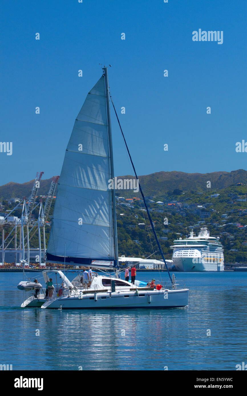 Catamaran Megisti, Wellington Harbour and CBD, Wellington, North Island, New Zealand - Stock Image