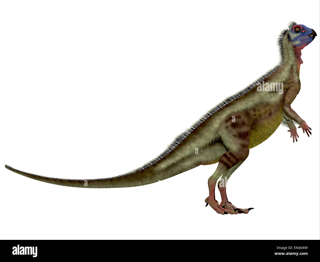 Hypsilophodon was an omnivorous dinosaur that lived in the Cretaceous Period of England. - Stock Image