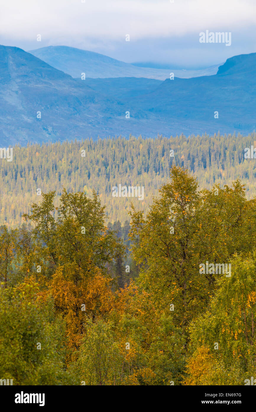View over mountain area from Kvikkjokk with autumn colors on the trees - Stock Image