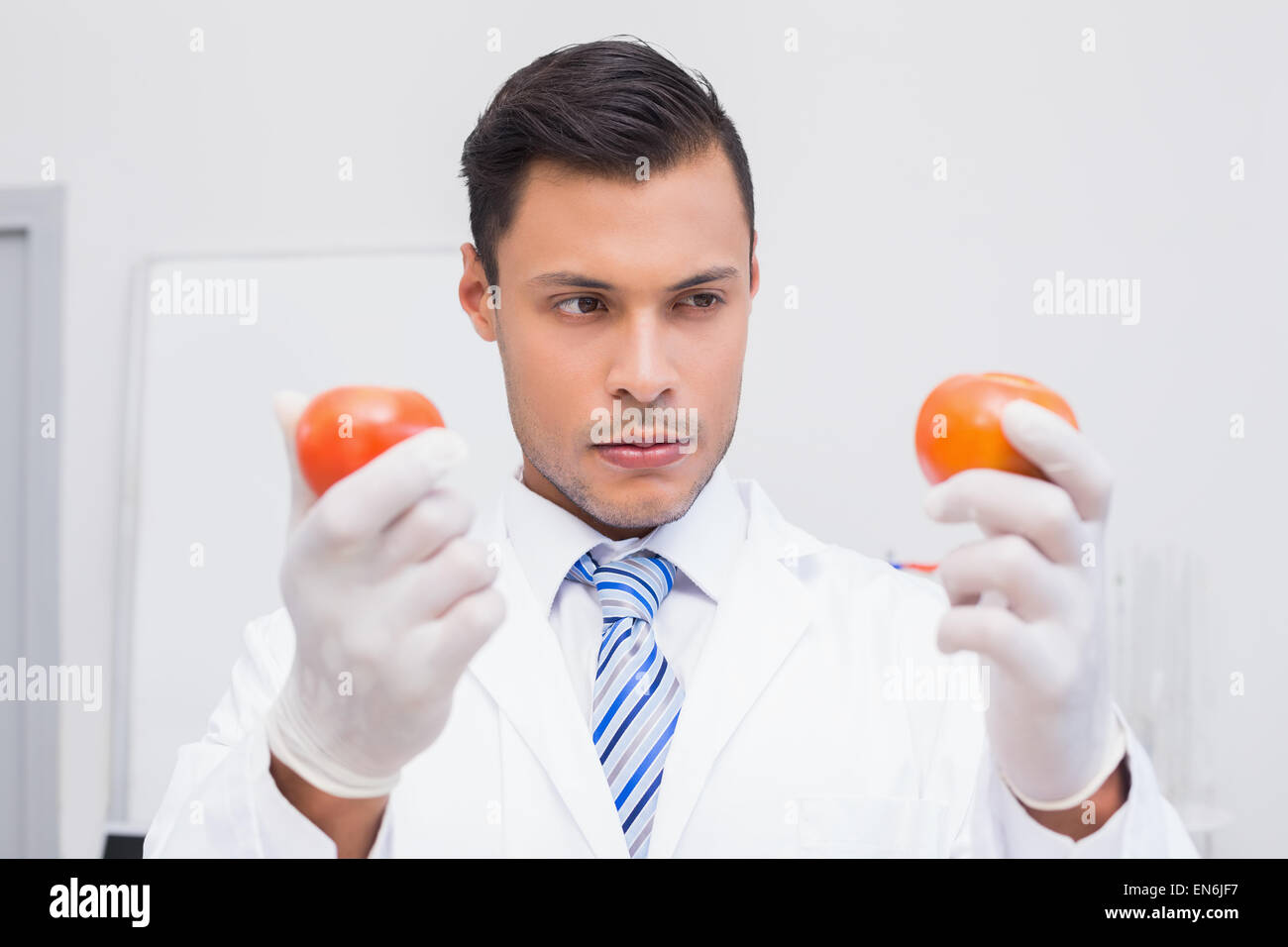 Perplex scientist holding two tomatoes - Stock Image
