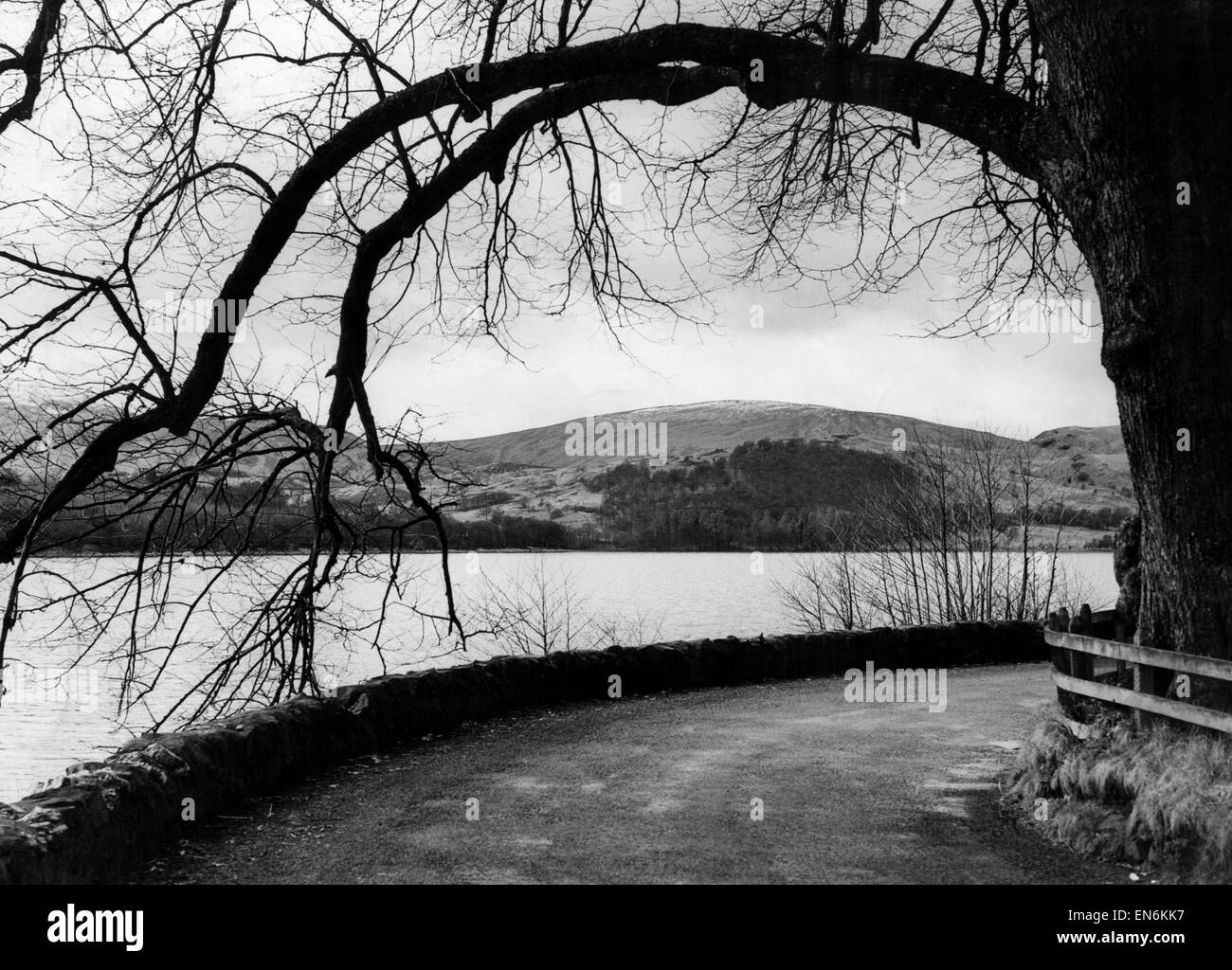 Roadside view of Loch Ard, a body of fresh water in the Loch Lomond and the Trossachs National Park, Stirling District, - Stock Image