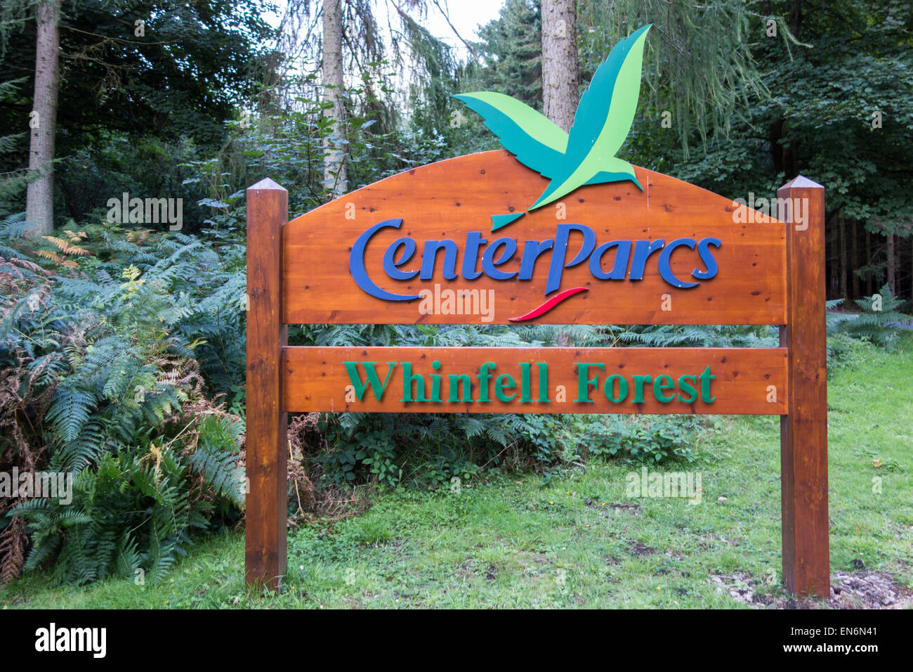 Whinfell Forest Stock Photos Whinfell Forest Stock Images Alamy