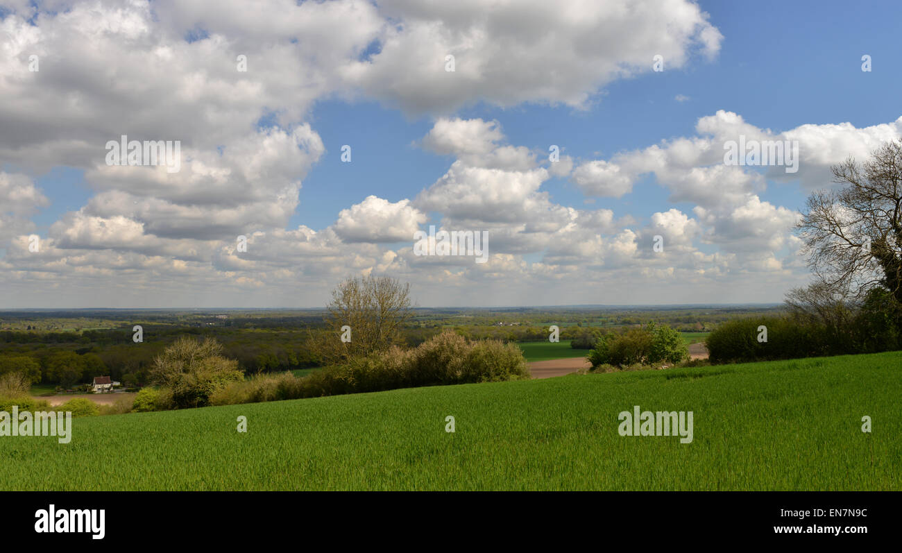 View over Surrey from The Hogs Back -1 - Stock Image