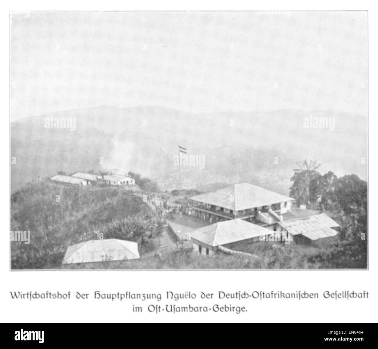 WOHLTMANN(1904) p085 Wirtschaftshof der Hauptpflanzung Nguelo der Deutsch-Ostafrikanischen-Gesellschaft - Stock Image