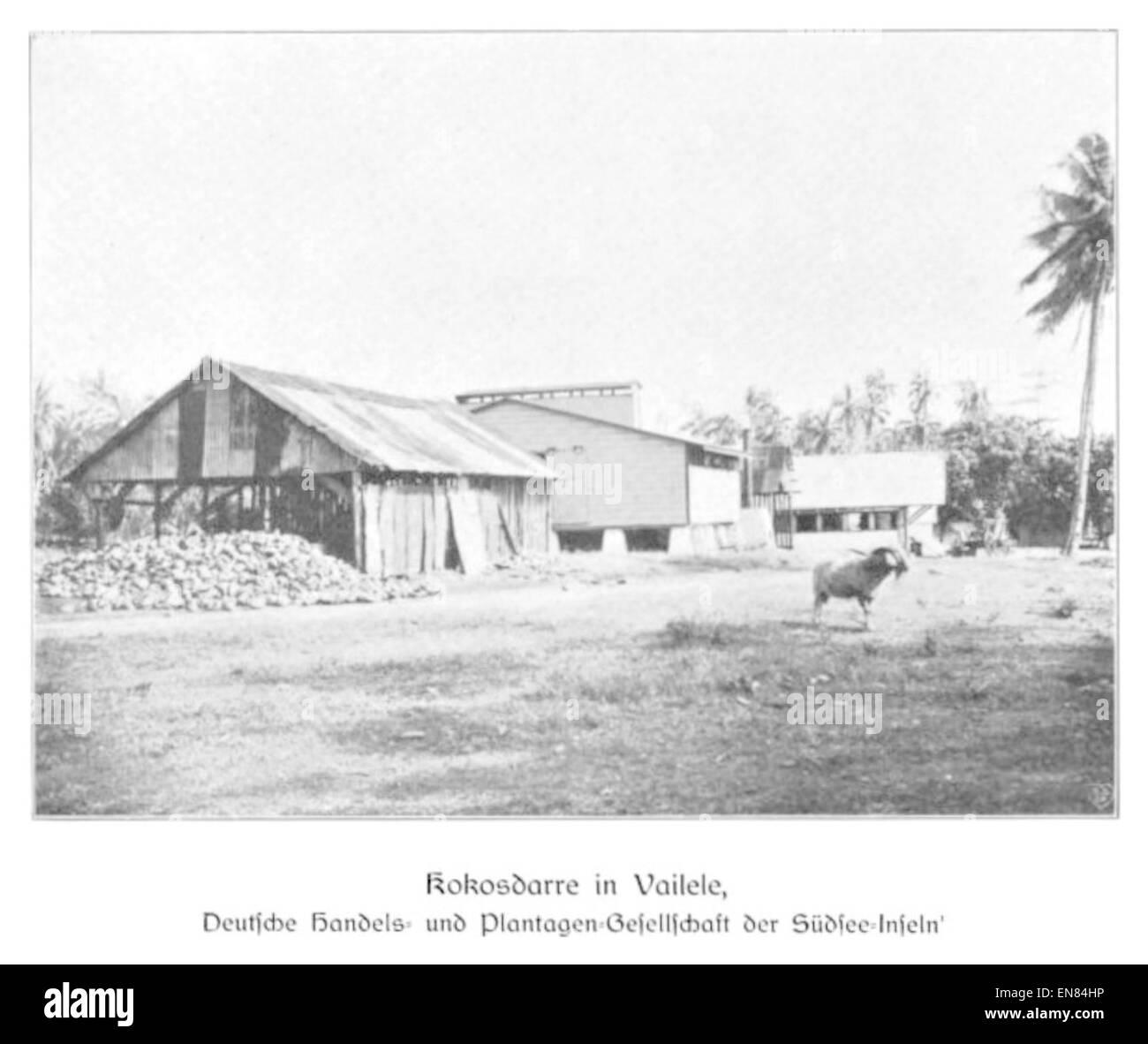 WOHLTMANN(1904) p103 Kokosdarre in Vailele, Deutsche Handels- und Plantagengesellschaft der SC3BCdsee-Inseln - Stock Image