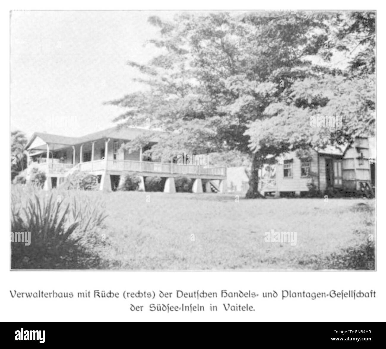 WOHLTMANN(1904) p104 Verwalterhaus mit KC3BCche, Deutsche Handels- und Plantagengesellschaft der SC3BCdsee-Inseln - Stock Image