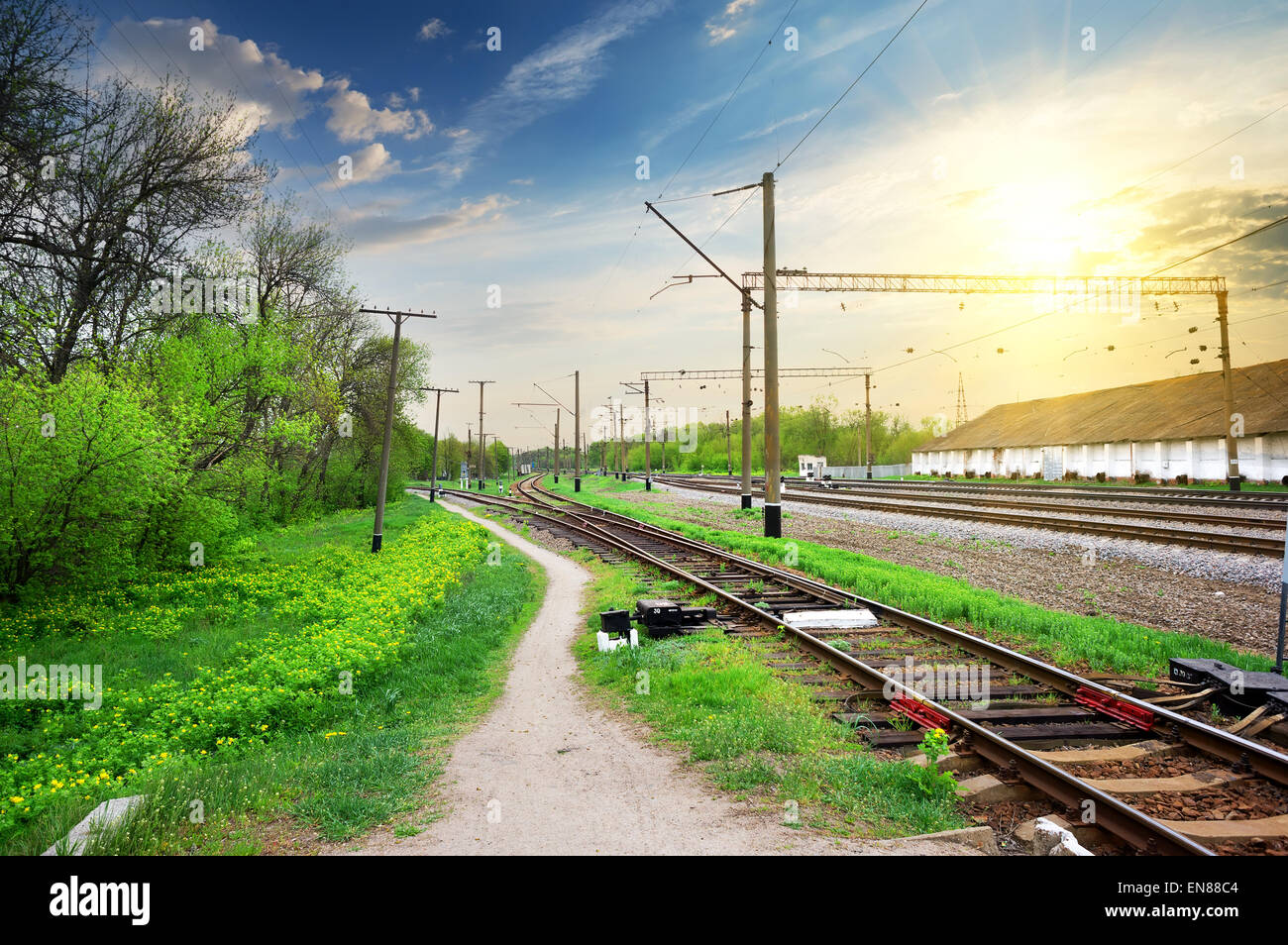 Electric poles on a railway station at sunrise - Stock Image