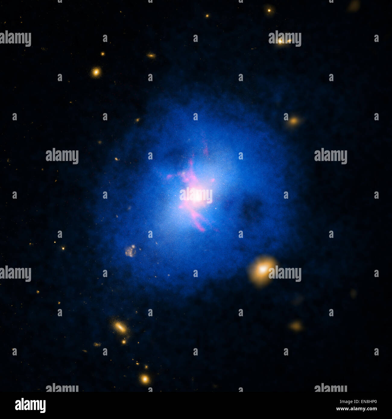 Chandra telescope made a family portrait of a cluster of NGC 6231 52