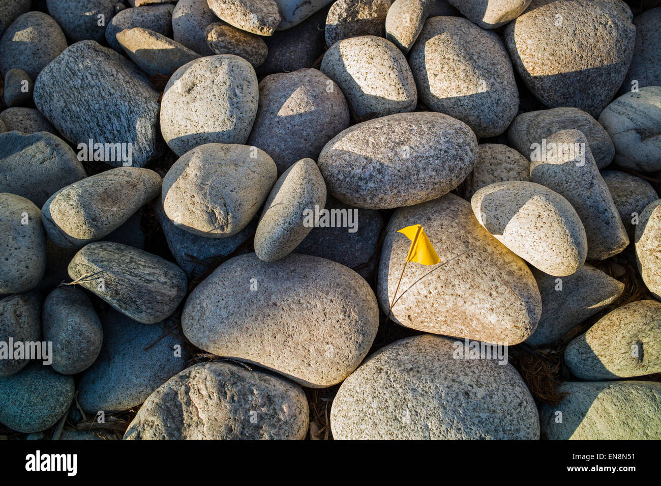 Stones In The Garden River rocks used as landscaping stones in the garden of a craftsman river rocks used as landscaping stones in the garden of a craftsman style residential home in colorado usa workwithnaturefo