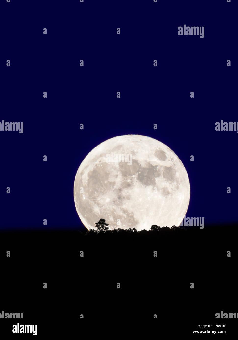 Full moon rising over Rocky Mountains, Salida, Colorado, USA - Stock Image