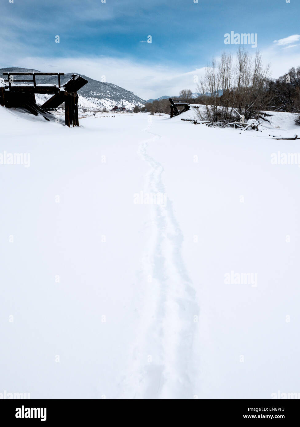 Footprints and tracks in fresh snow. - Stock Image
