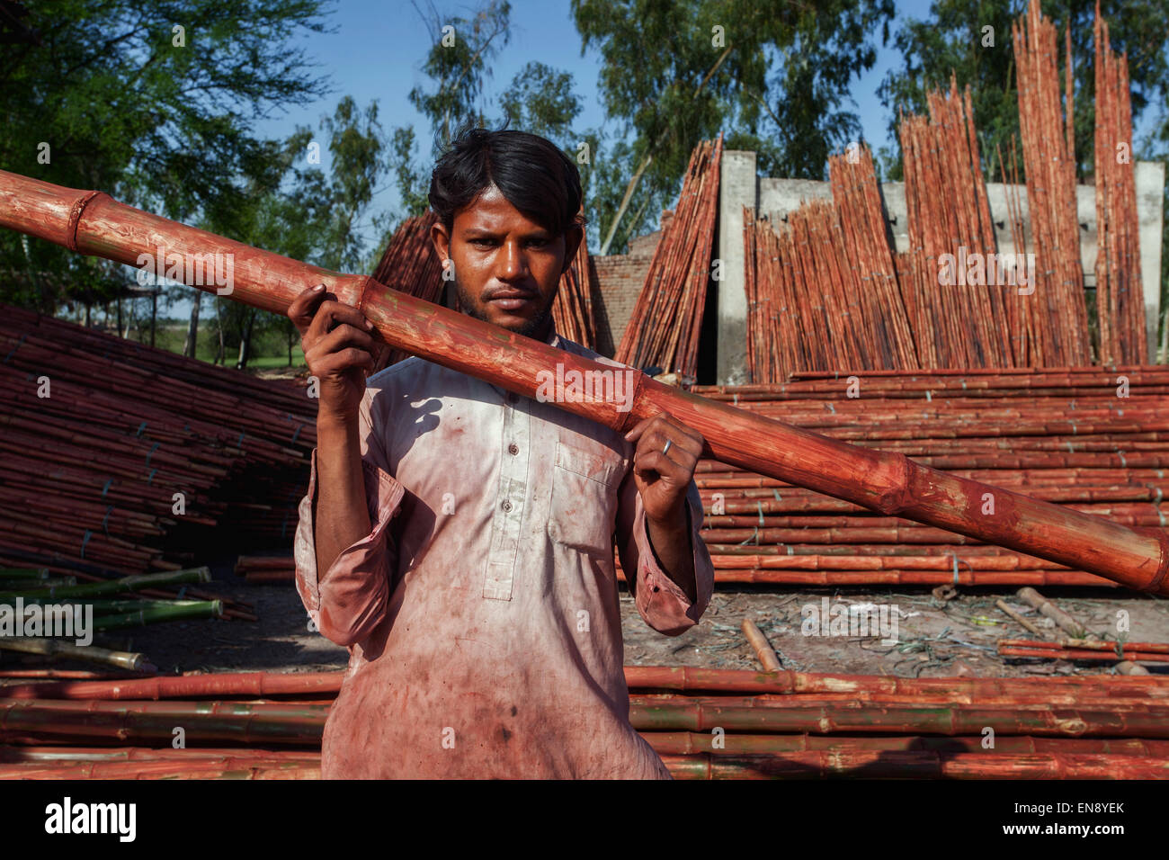 A laborer holds a bamboo after painting it red in final stages before shipping in a village in Pakistan - Stock Image
