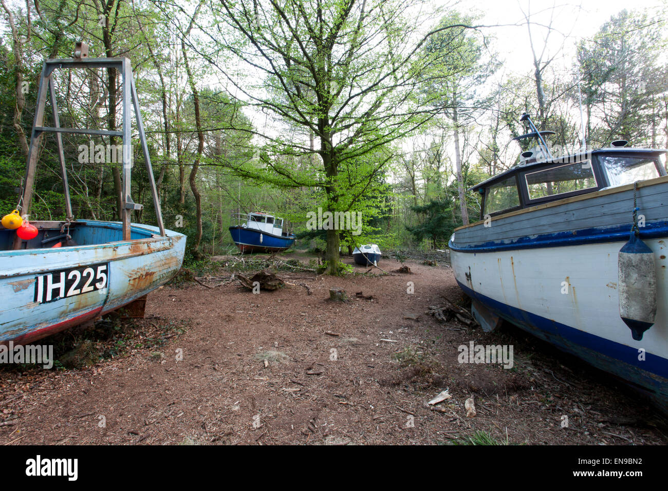 The abandoned fishing boats at Leigh Woods, Bristol forming the Withdrawn Art Exhibition by Luke Jerram. - Stock Image