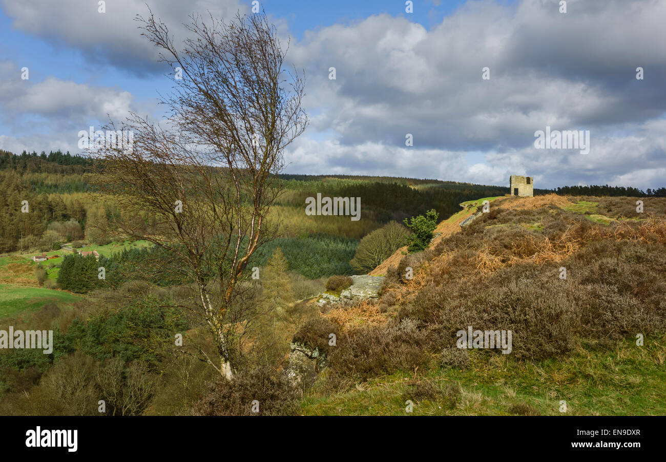 Ruins of Skelton Tower, farmhouse and fields, surrounded by the undulating landscape of the North York Moors National - Stock Image