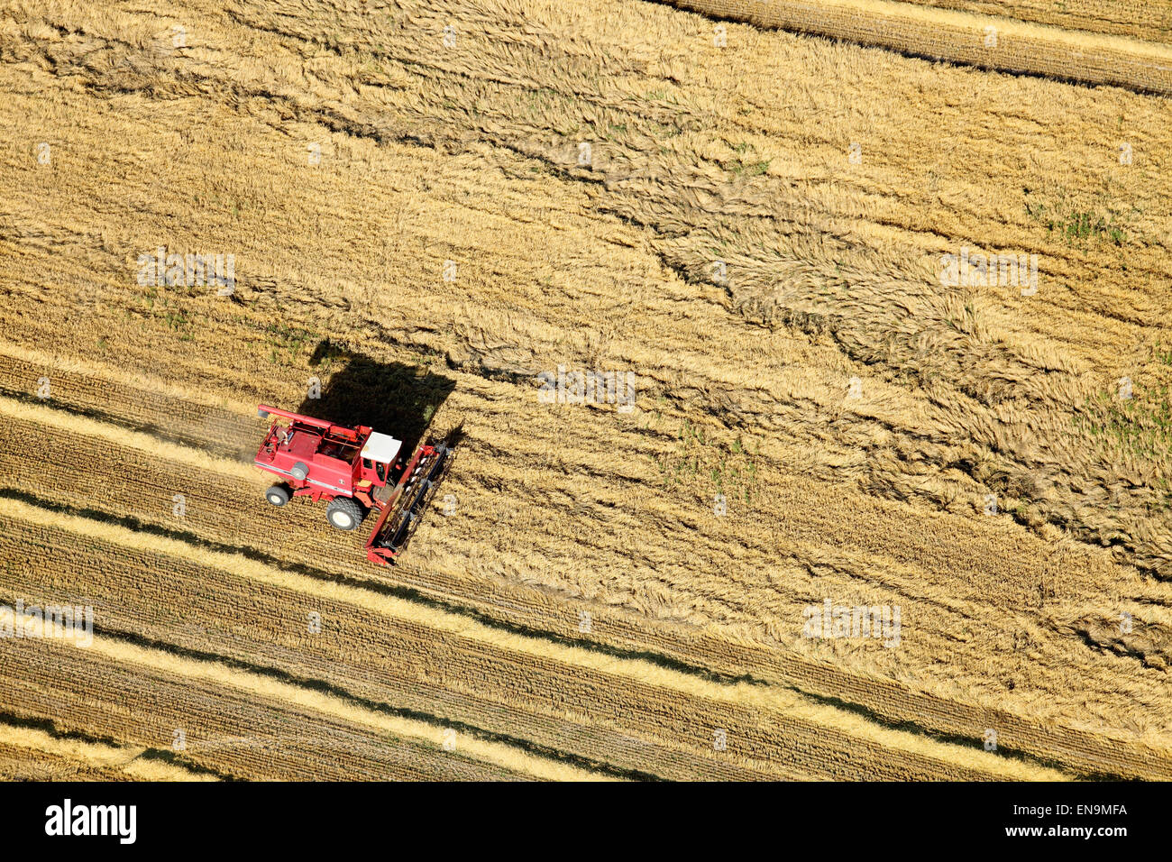 An aerial view of farm machinery in the field harvesting wheat - Stock Image