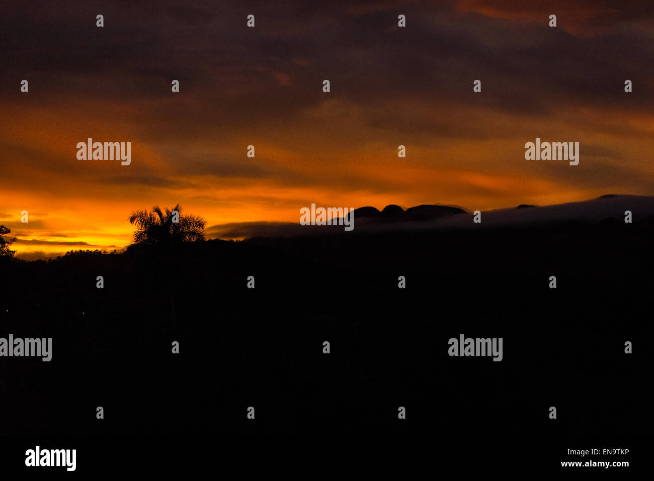 Cuba valley Valle de Vinales panorama view hills palm trees at sunset dramatic orange sky & storm clouds Stock Photo