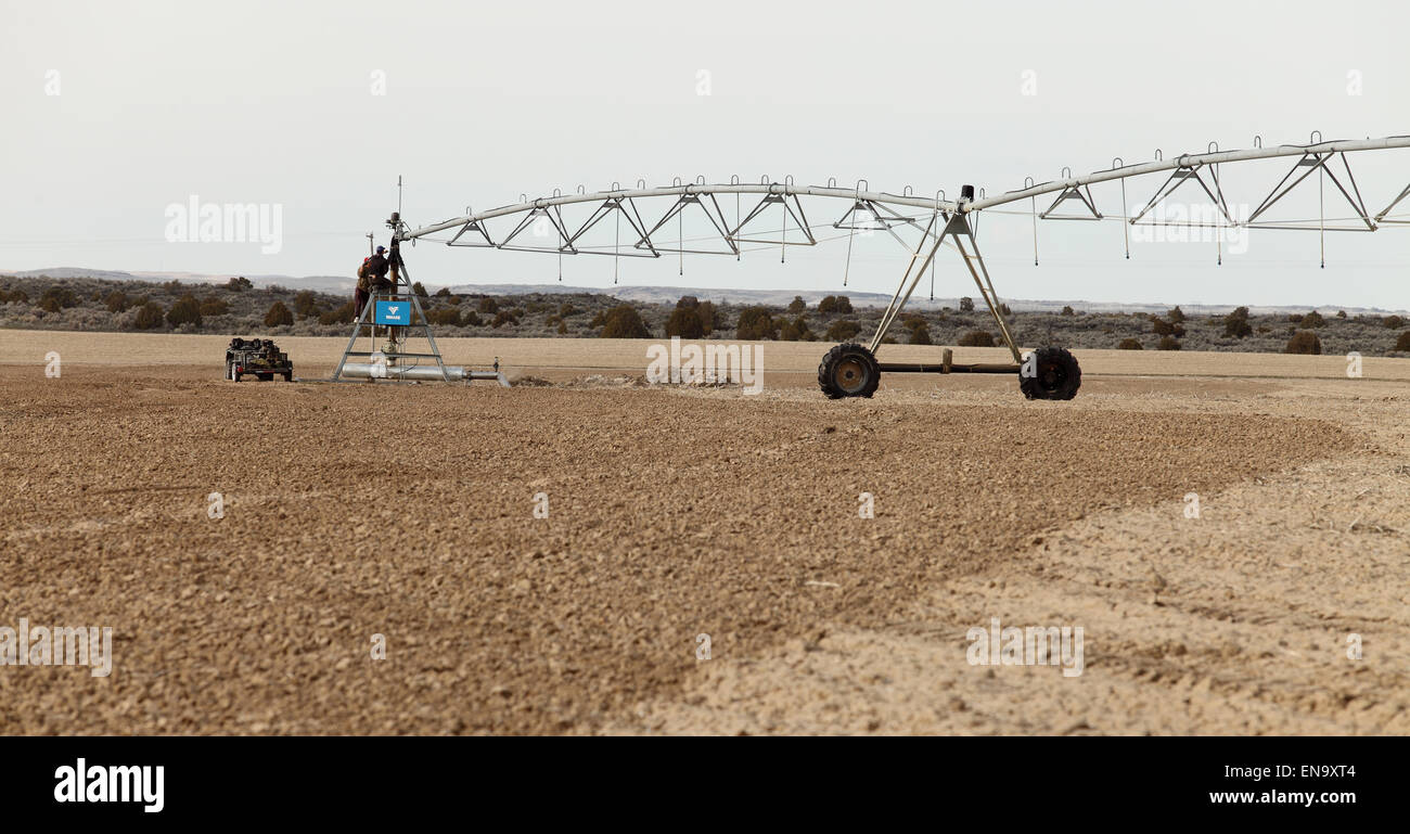 An agricultural sprinkler system in a a wheat field, being inspected for the new growing season - Stock Image