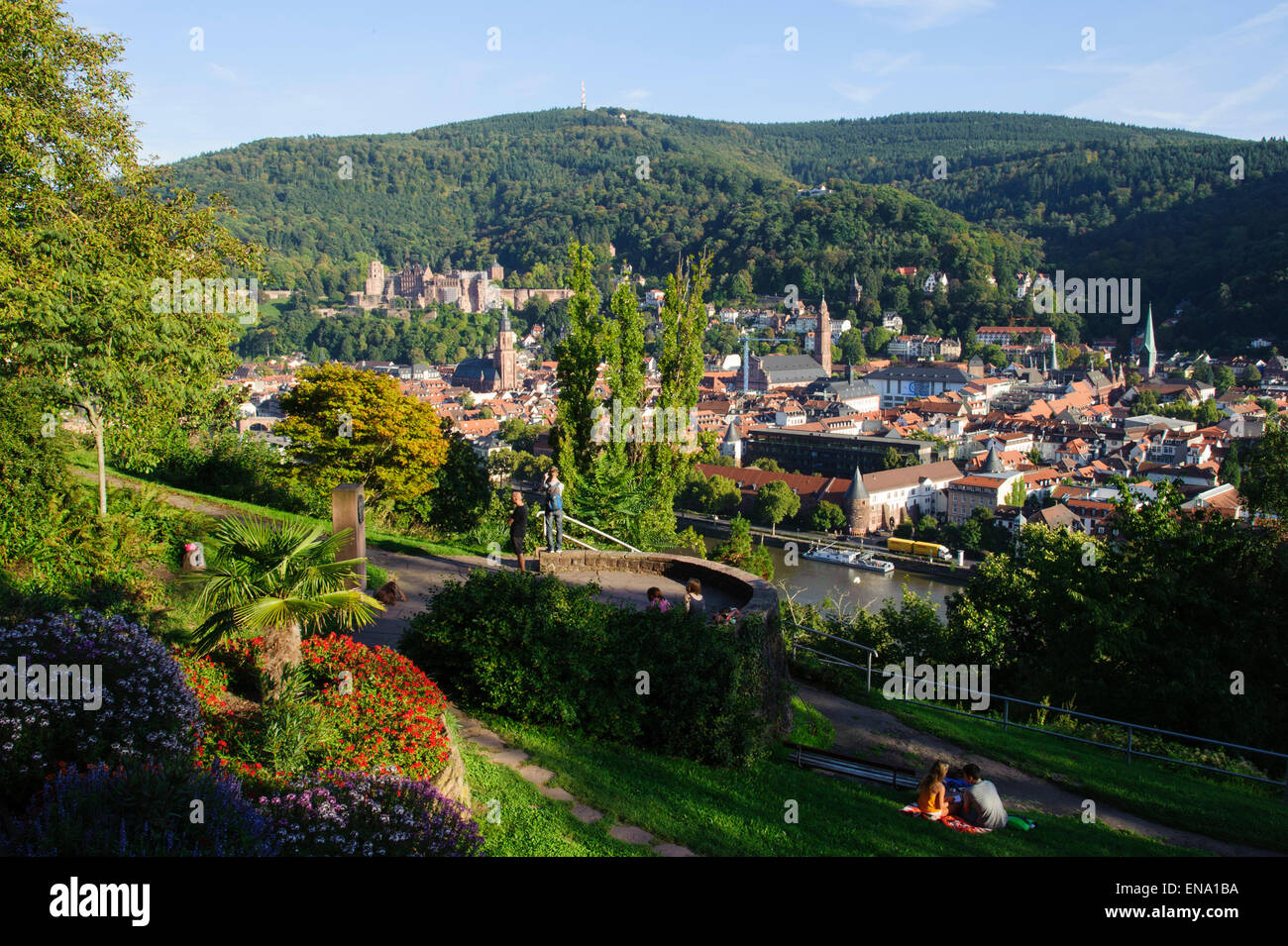 Heidelberg, view from Philophenweg on old town and castle , Germany - Stock Image