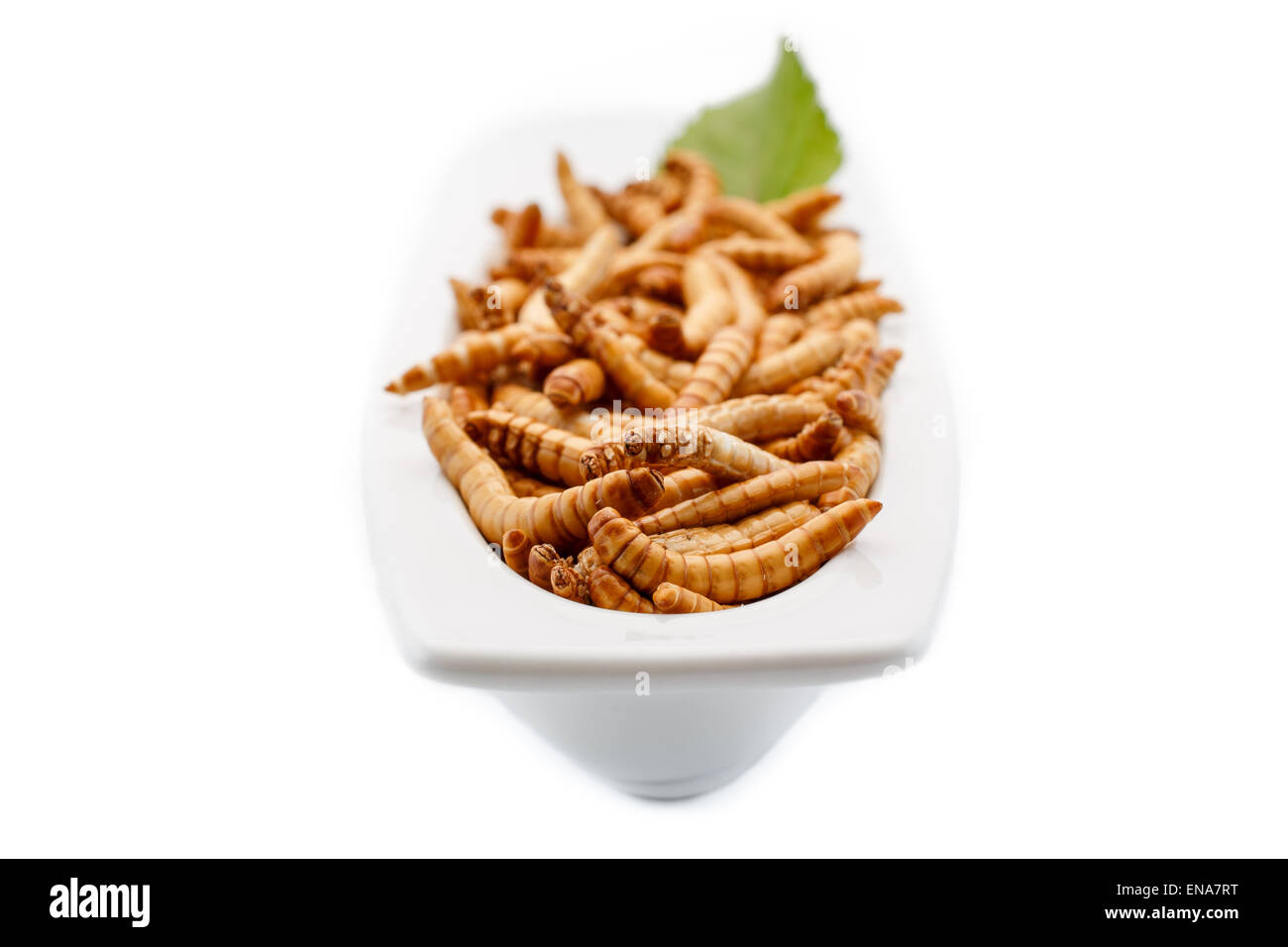 Mealworms close up with decoration. Healthy mealworms basket with decoration. Food of the future. Mealworms are - Stock Image