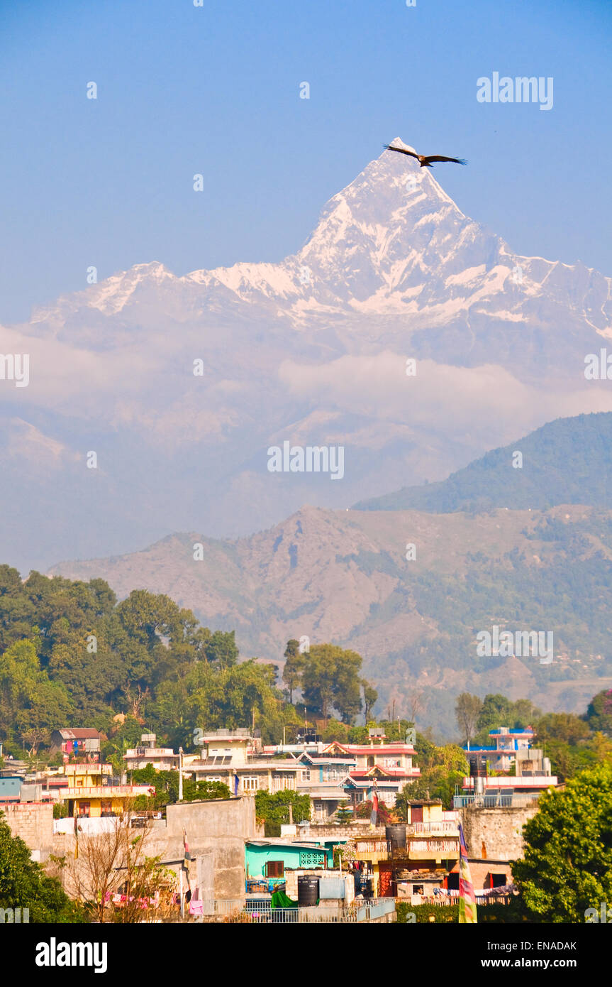 What does Pokhara mean for Nepal? - Stock Image
