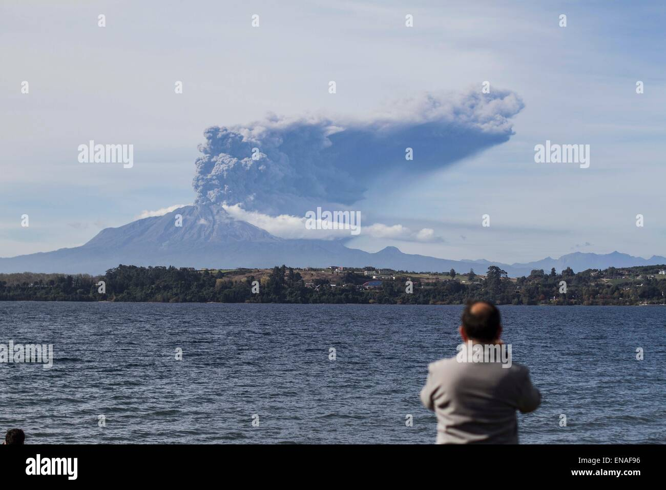 Puerto Varas, Chile. 30th Apr, 2015. A man watches the Calbuco volcano in Puerto Varas Llanquihue province, Chile, - Stock Image