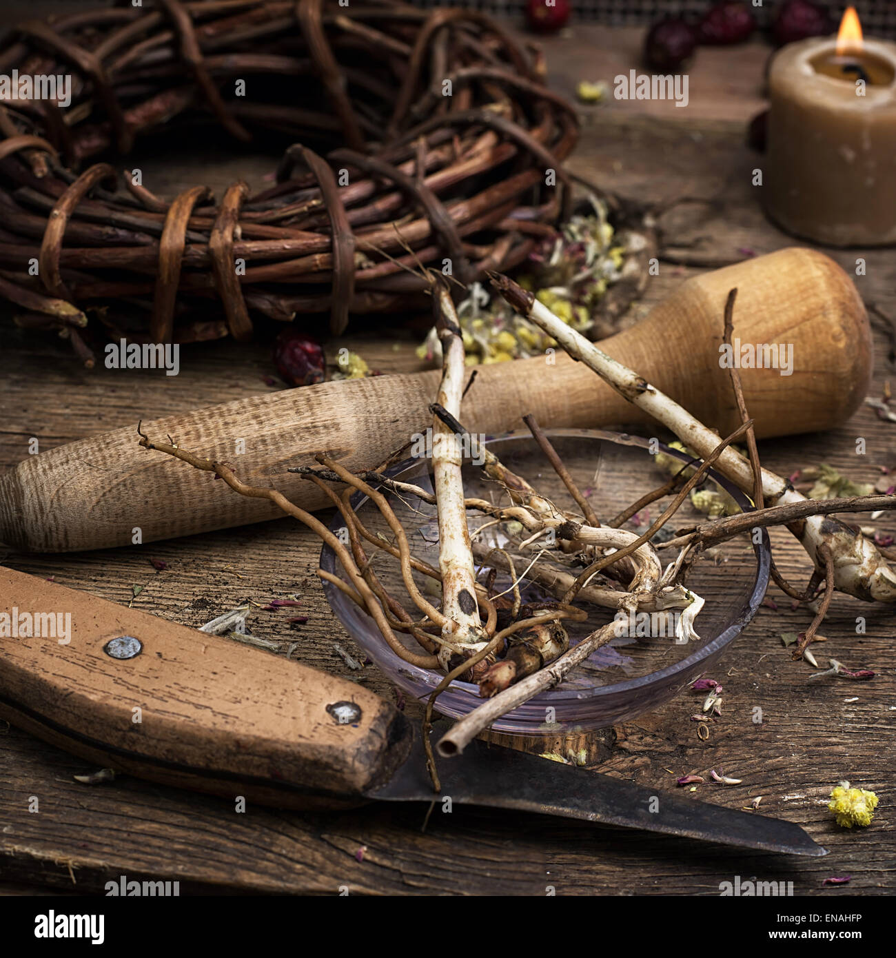 dried medicinal licorice root herbalist.Selective focus - Stock Image