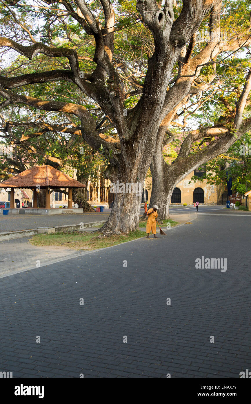 Man sweeping leaves in historic fort area of the town of Galle, Sri Lanka, Asia - Stock Image