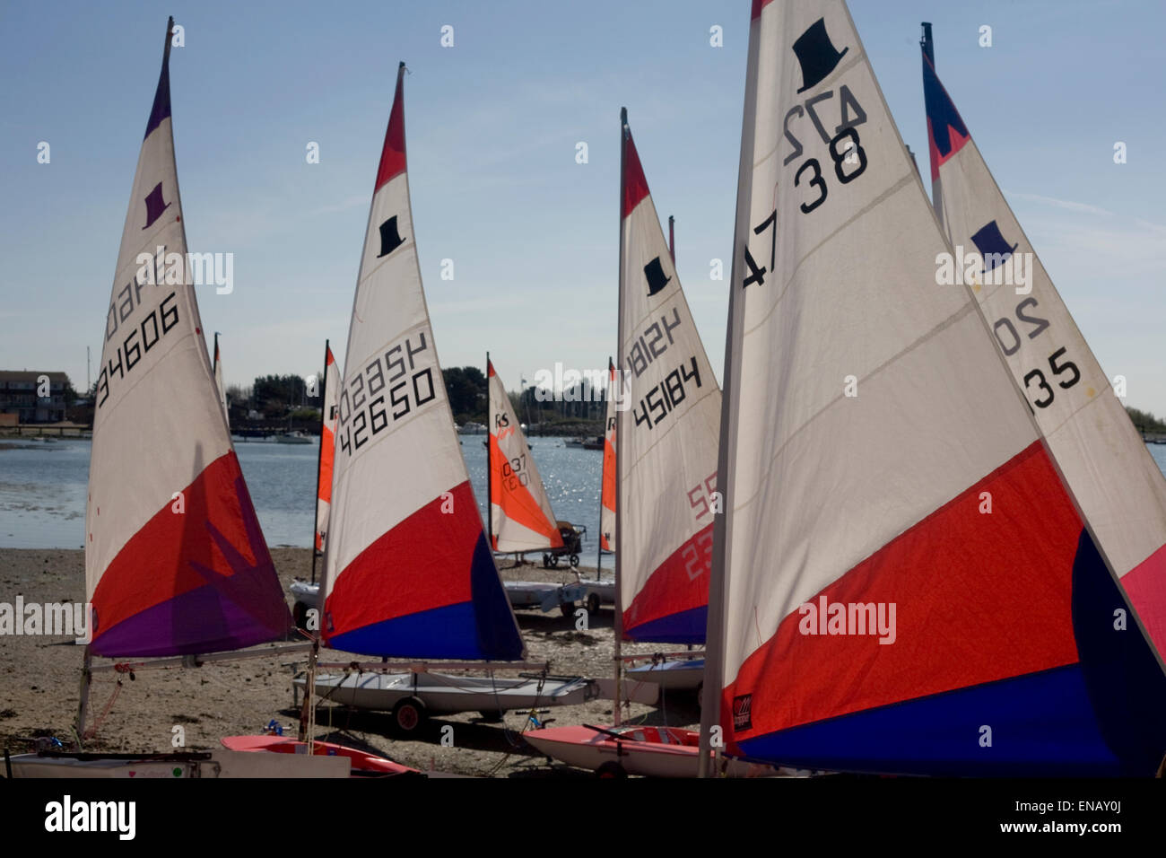repetition,sails,dinghies,togetherness,sailing,group - Stock Image