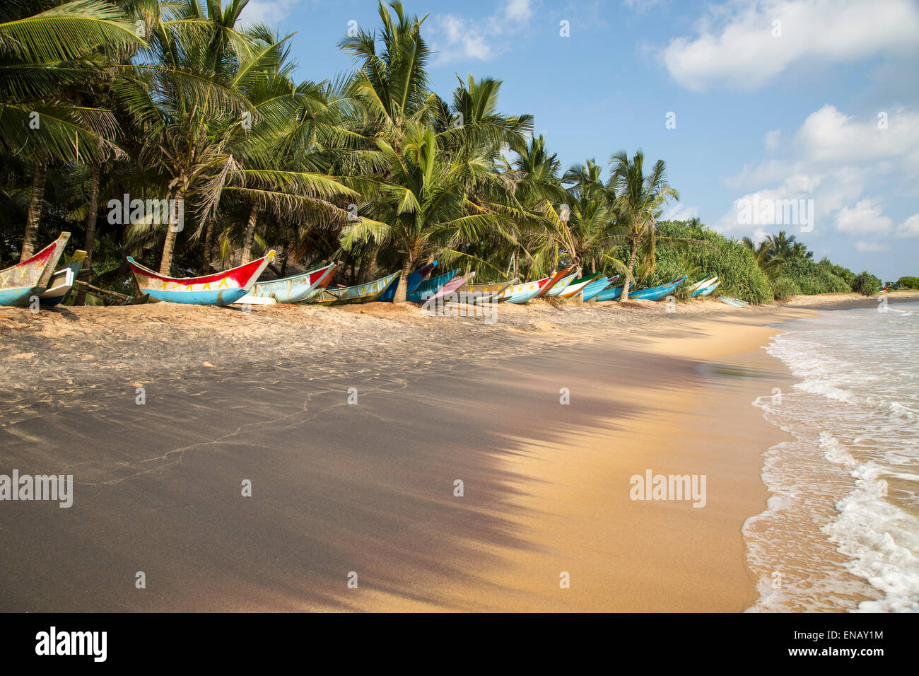 Brightly coloured fishing canoes under coconut palm trees of tropical sandy beach, Mirissa, Sri Lanka, Asia - Stock Image