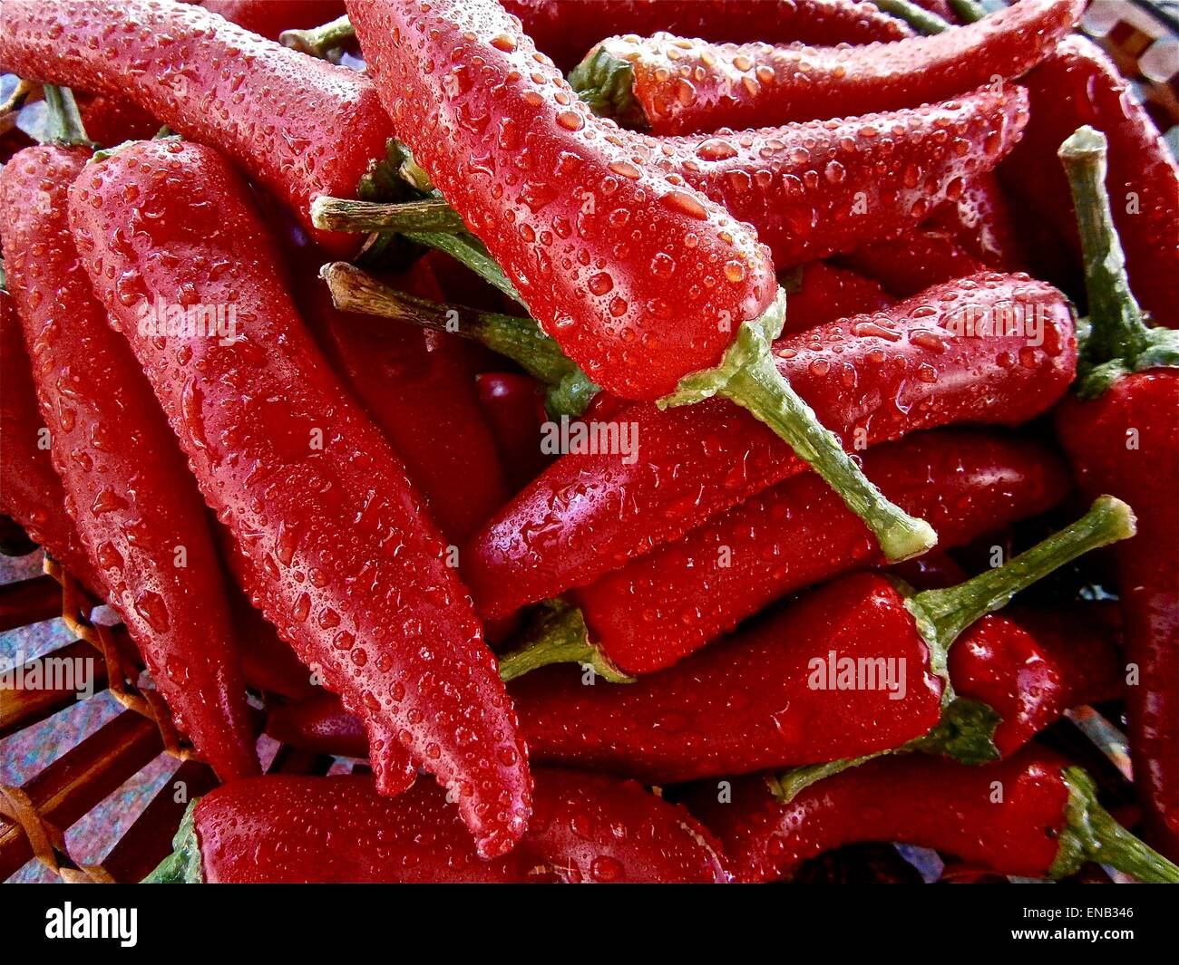 Red chili background - Stock Image