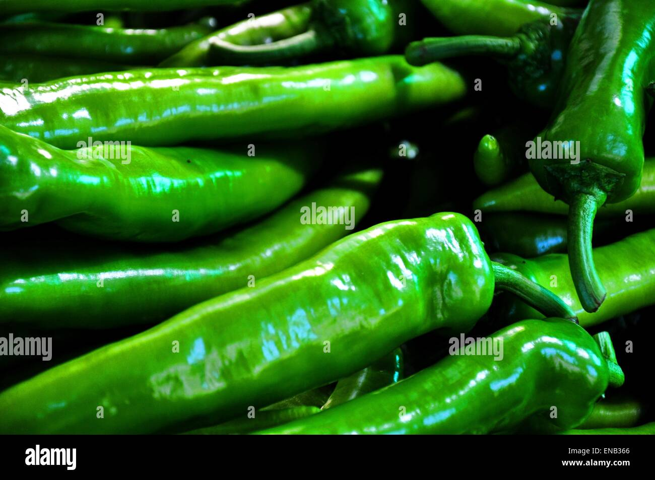 Green chili background - Stock Image