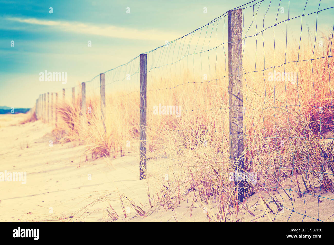 Fence on a dune, nature background, shallow depth of field. - Stock Image