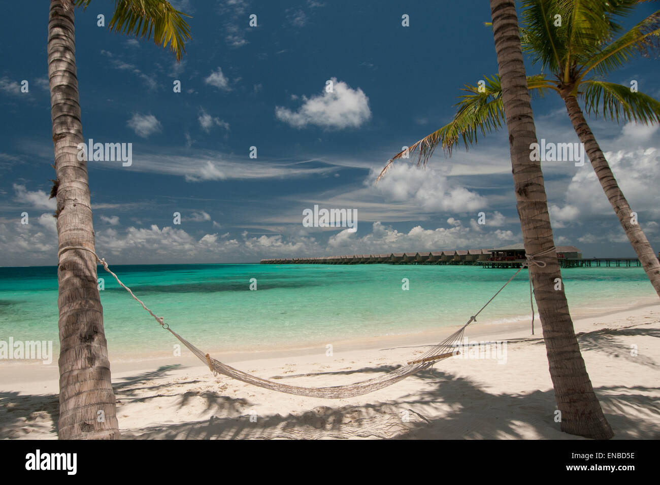 Empty hammock between palm trees on tropical beach in Maldives. Stock Photo