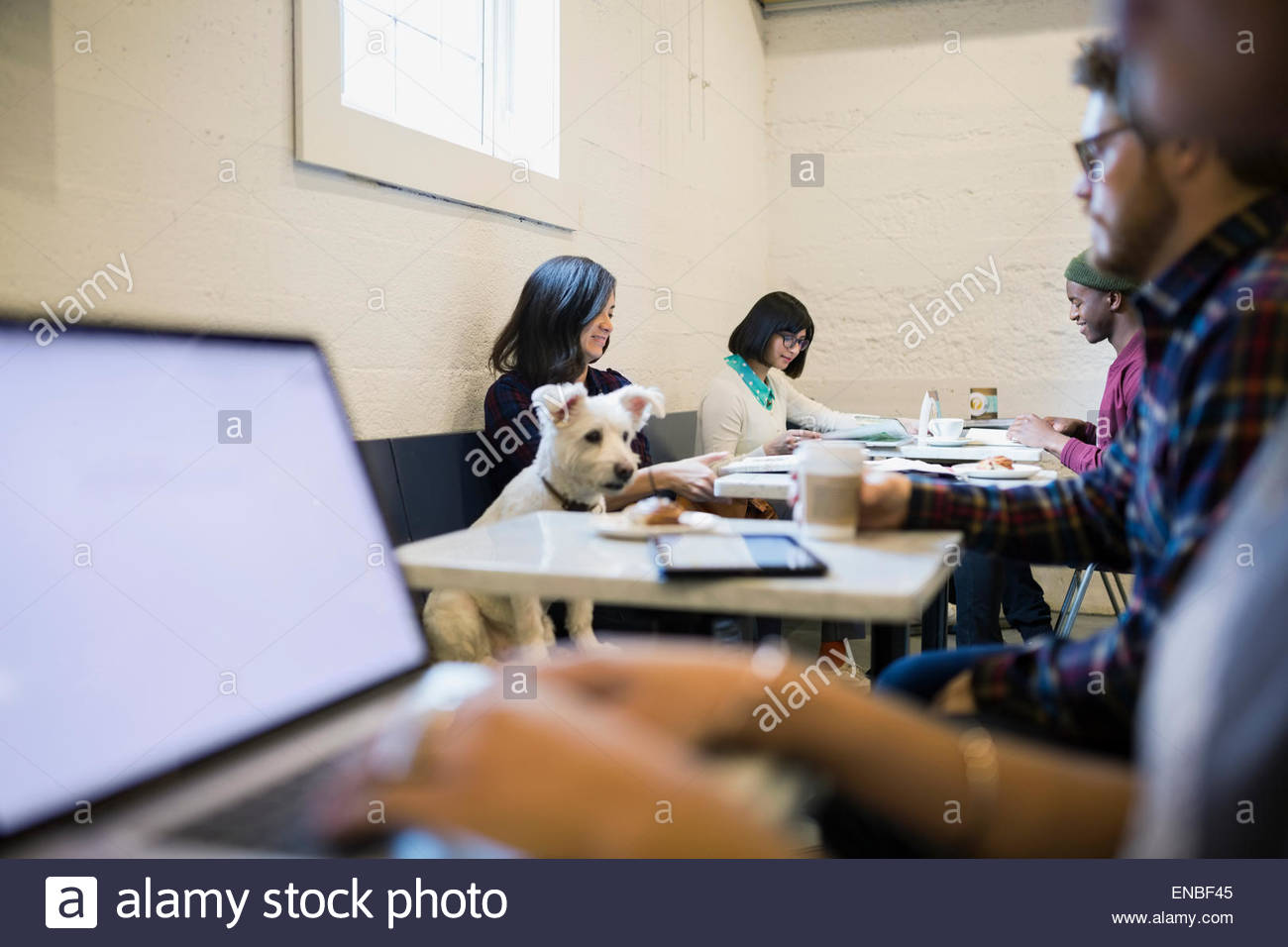 People and dog at tables in cafe - Stock Image