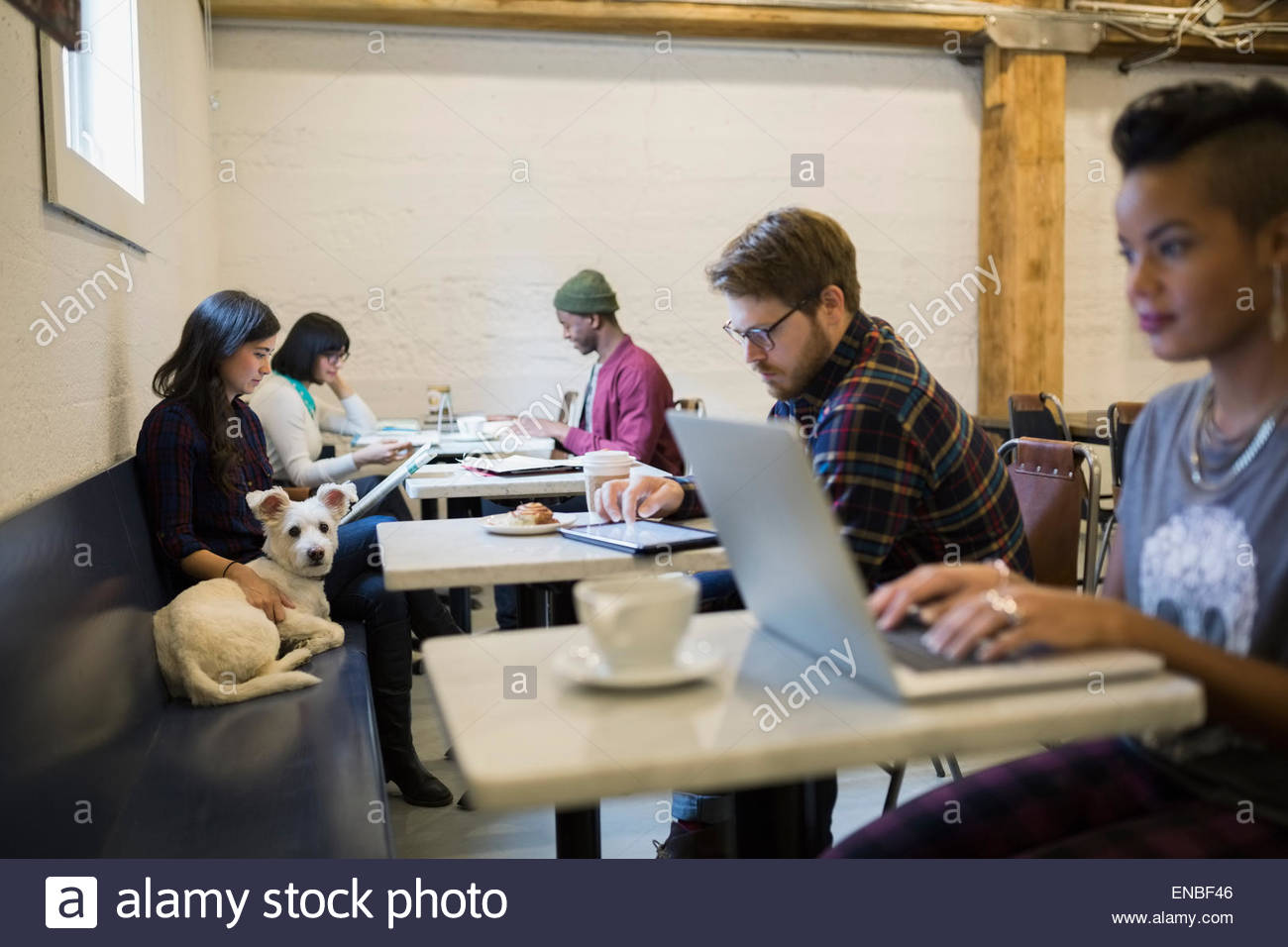 People and dogs at tables in cafes - Stock Image