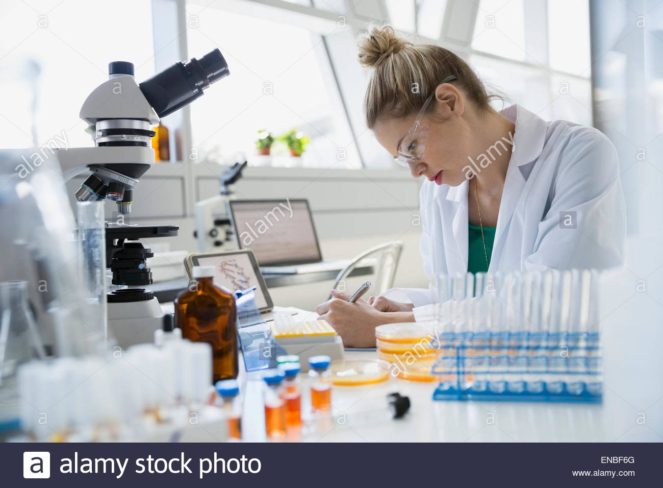 Scientist taking notes on scientific experiment - Stock Image