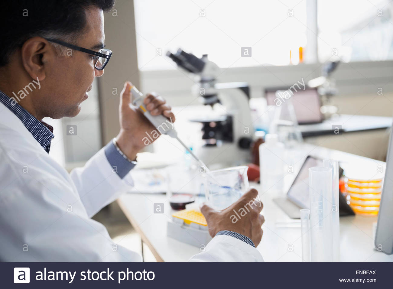 Scientist adding liquid to beaker with pipette laboratory - Stock Image