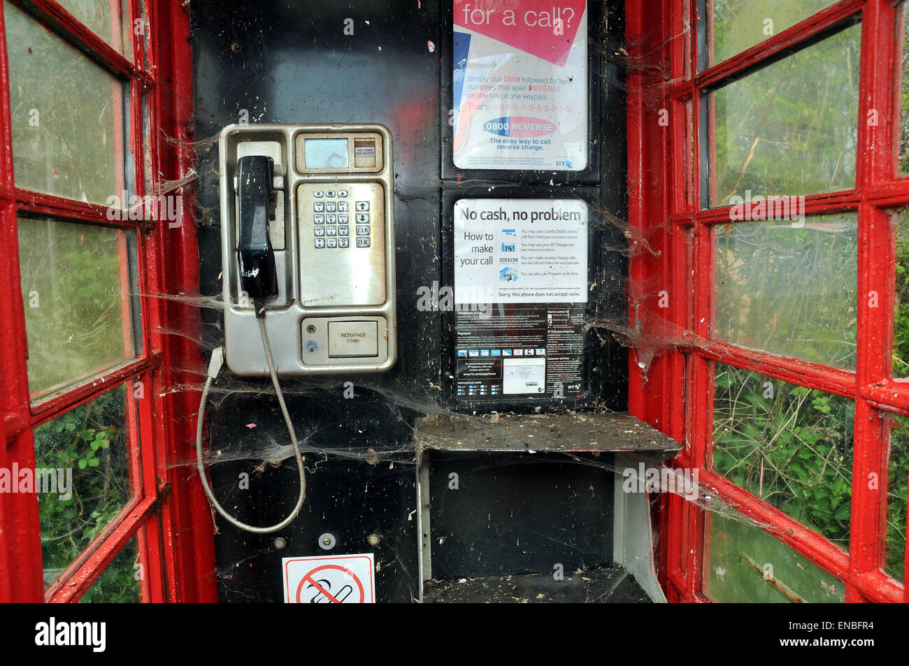A spiders web inside an old telephone box - Stock Image