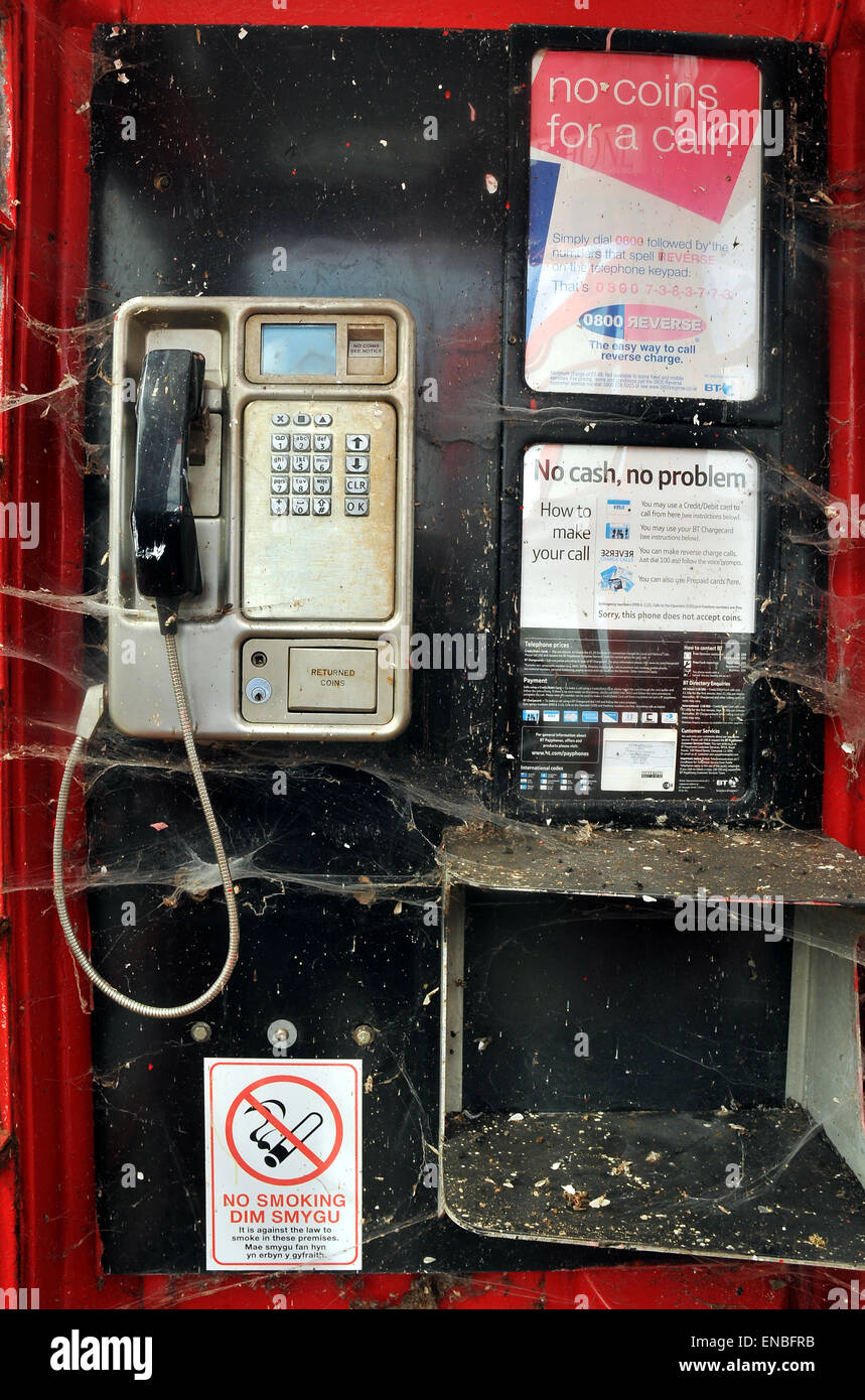 Spiders webs inside an old telephone box - Stock Image