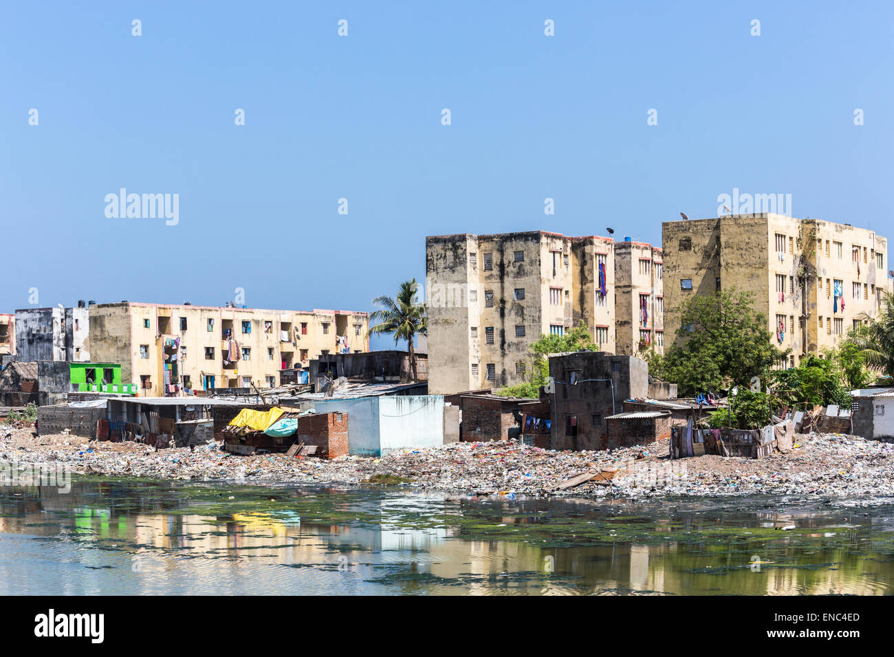 Third world poverty lifestyle: Slums and apartment blocks on the banks of the polluted Adyar River estuary in Chennai, - Stock Image