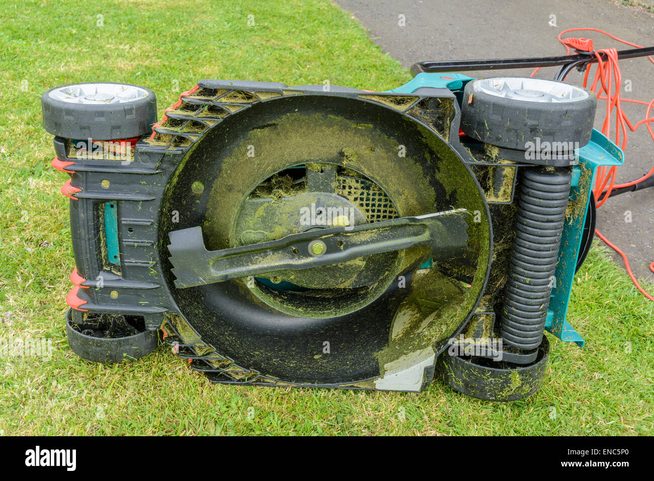 Underside of an electric lawnmower showing the rotary cutter. - Stock Image
