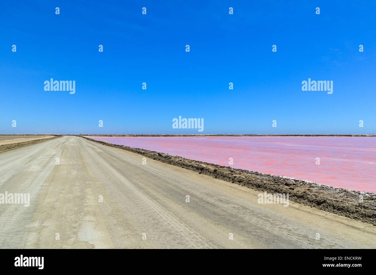 Dirt road and pink water of the salt works in Walvis Bay, Namibia, in the Namib desert - Stock Image