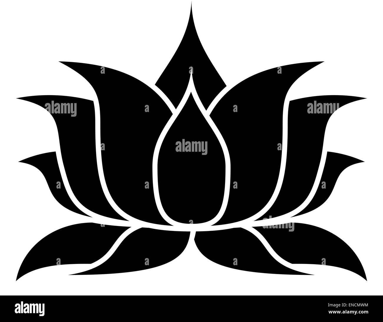 Lotus Flower Art Black And White Stock Photos Images Alamy
