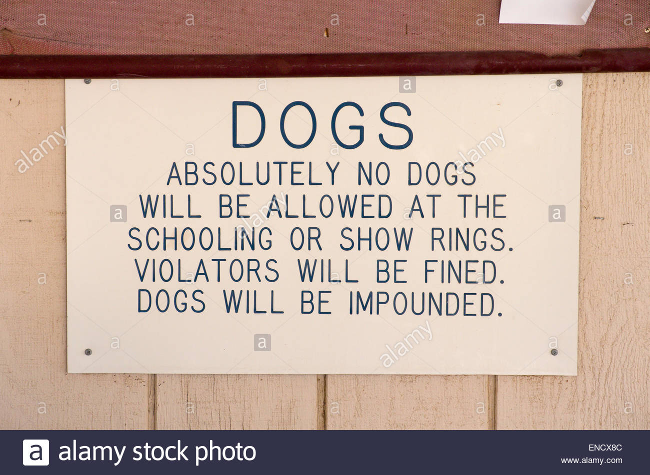A sign prohibits dogs at an equestrian area at the Pima County Fairgrounds in Tucson, Arizona. - Stock Image