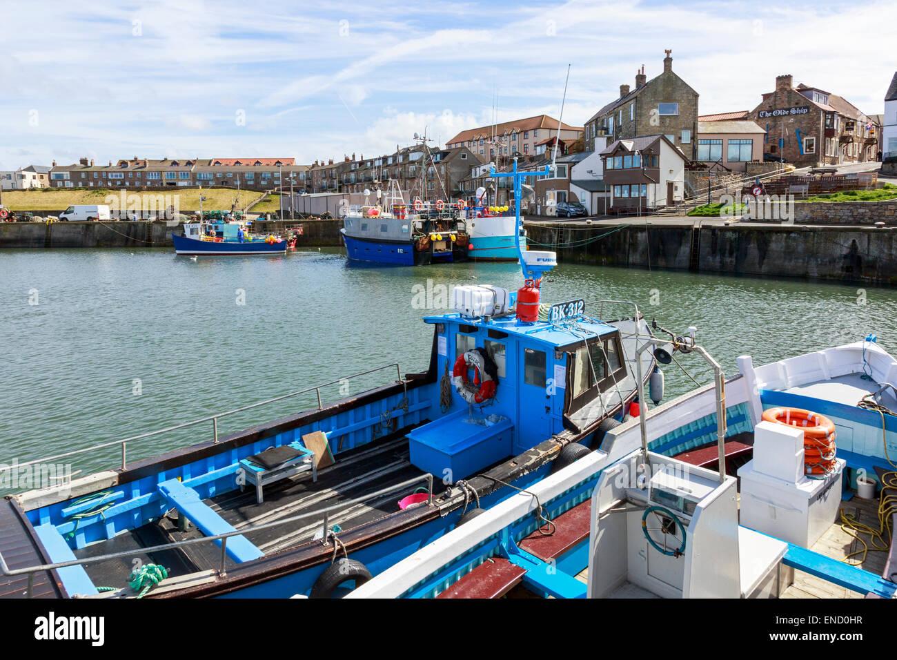 Seahouses harbour, Northumberland, England, UK - Stock Image
