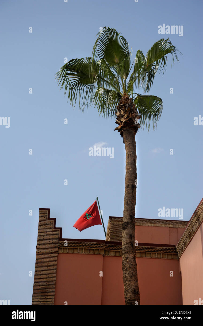 morrocan flag flying over the royal palace behind a palm tree in marrakech - Stock Image