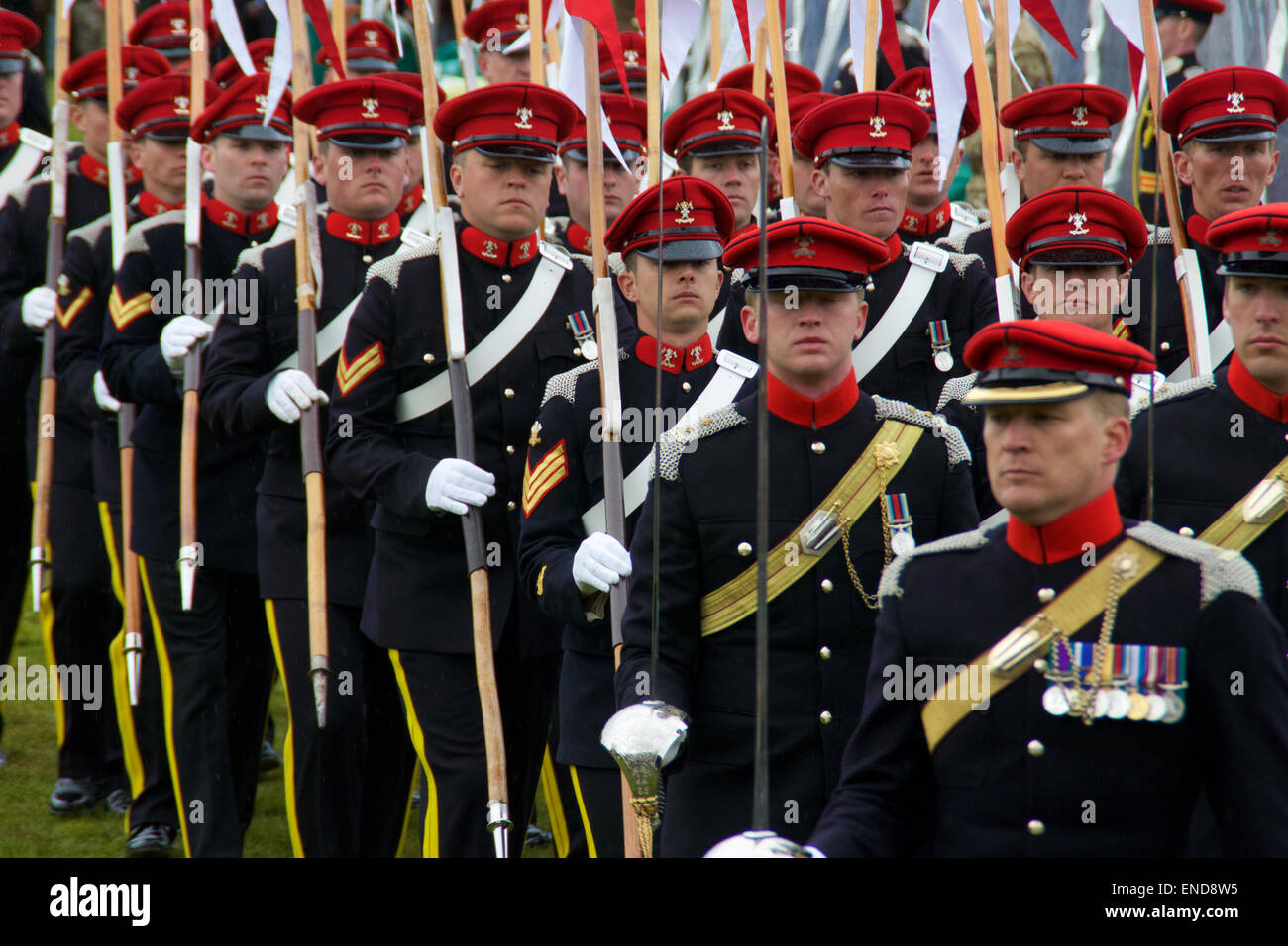 9th-12th Royal Lancers Pin de Solapa